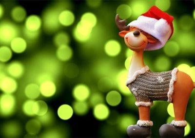 Christmas… how to keep healthy, balanced and sane!
